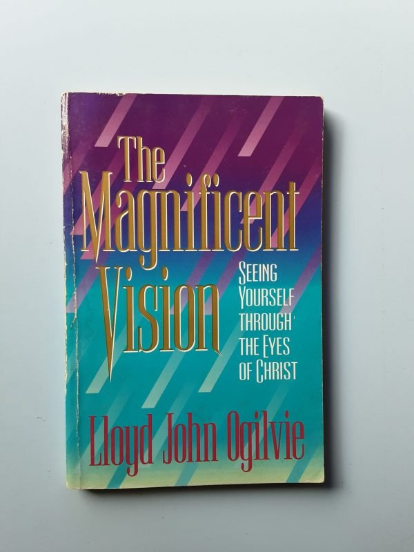 THE MAGNIFICENT VISION